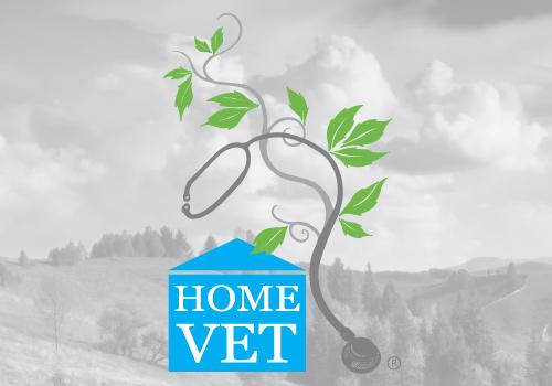 HomeVet | Dr Jeff Feinman | integrative vet practice